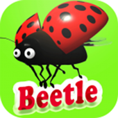 Adventures beetle icon