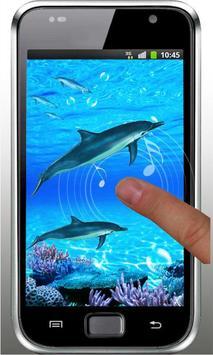 Dolphin Sounds Live Wallpaper apk screenshot