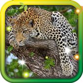 Jaguar Best HD live wallpaper icon