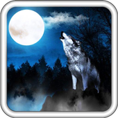Wolf Sounds Top Live Wallpaper icon