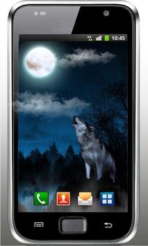 Wolf Sounds Top Live Wallpaper poster