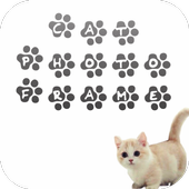 Cat Photo Frame icon