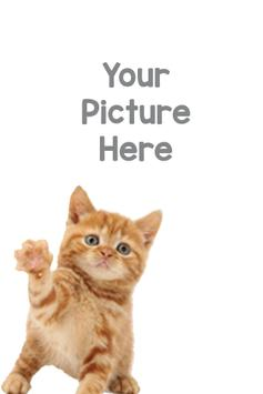 Cat Photo Frame poster