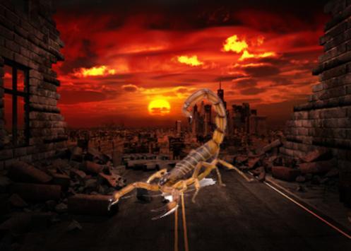 Scorpion Photo Editor poster