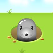 Touch Moles icon