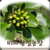 비파황칠농장 icon