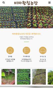 비파황칠농장 poster
