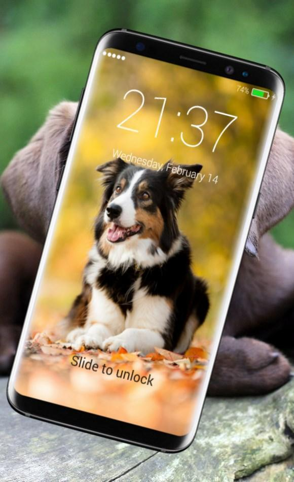 Funny Dogs HD Wallpaper Lock Screen for Android - APK Download