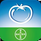 OrtXpert icon