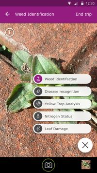 Scouting - Automate field diagnosis apk screenshot