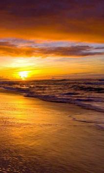 beach sunset live wallpaper poster