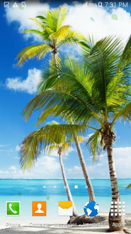 Palm tree beach live wallpaper for android apk download - Palm tree wallpaper for android ...