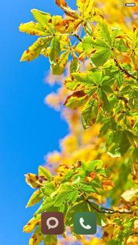 Beauty Fall Wallpaper HD screenshot 2