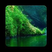 Beauty Nature HD Wallpaper icon
