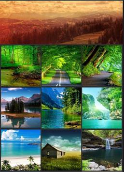 Beauty Nature HD Wallpaper poster