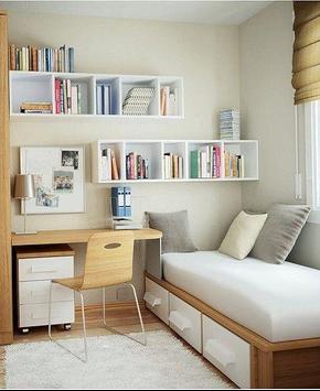 Bedroom Shelves poster