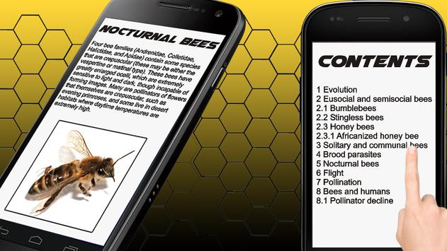 Bee Info Book poster