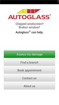 Autoglass® IE poster