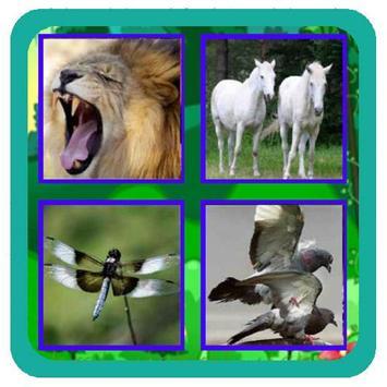 Animal Quiz New poster