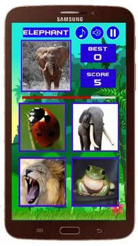 Animal Quiz New screenshot 1