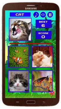 Animal Quiz New screenshot 4