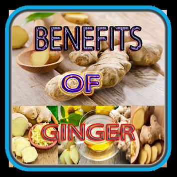 Benefits Of Ginger poster