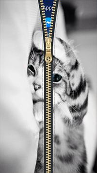 Kitty Cat Zipper Lock Screen HD apk screenshot