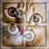 Best Free Puzzles for Kids: Cats! icon