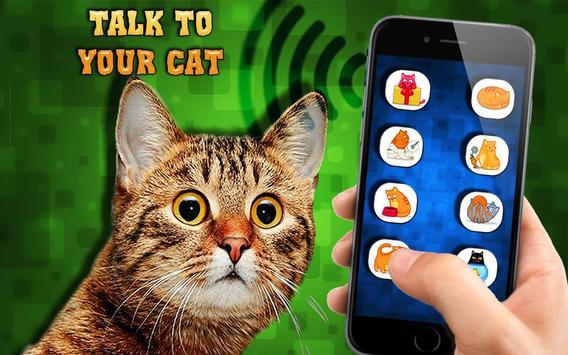 Cat translator dictionary poster