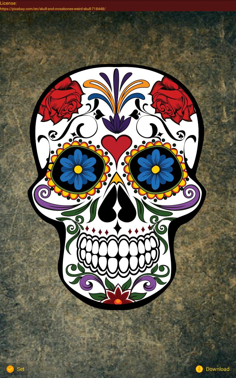 Day of the Dead Wallpapers for Android - APK Download