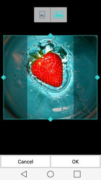 Fruit Wallpapers apk screenshot