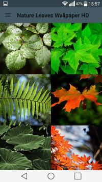 Leaves Wallpaper 🍂 poster