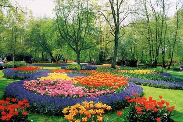 1000 Best Garden Plans For Android Apk Download