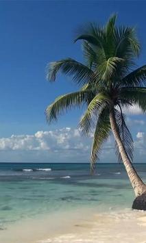 Real Sea Beach Waves LWP screenshot 1