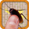 Cockroach Smasher icon