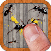 Ant Smasher icon