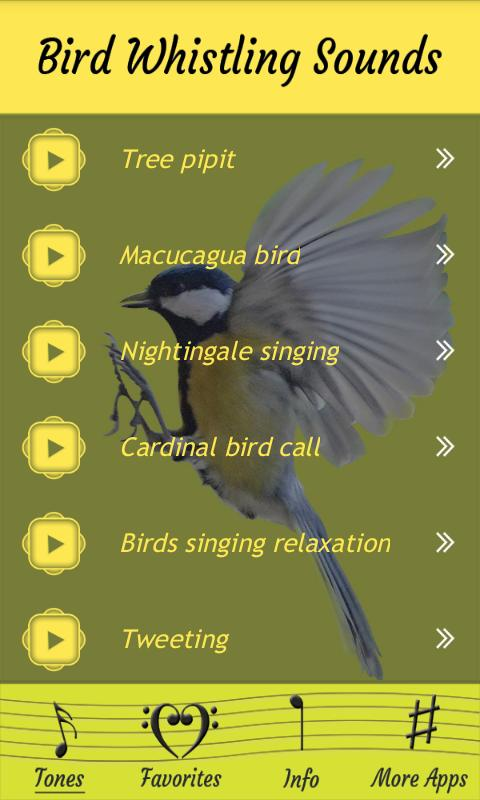 Whistle like a bird (without your hands) : LearnUselessTalents