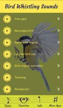 How to bird whistle? - Imitate Birds & Sounds!