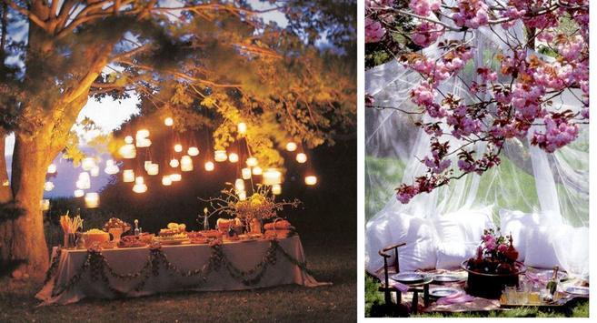 Best Garden Party Idea apk screenshot