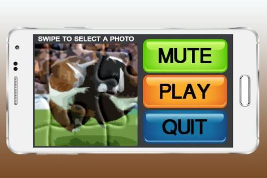 Guinea Pig Games Puzzle poster