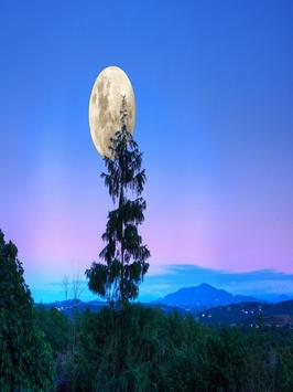 Moonlight Wallpapers screenshot 5