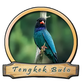 Master Kicau Tengkek Khusus icon