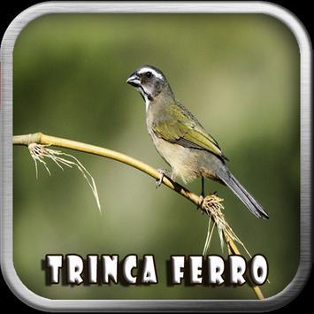 Canto do Trinca Ferro apk screenshot