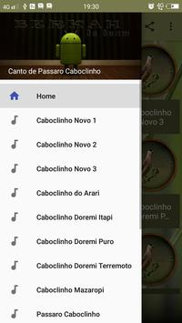 Canto de Passaro Caboclinho poster