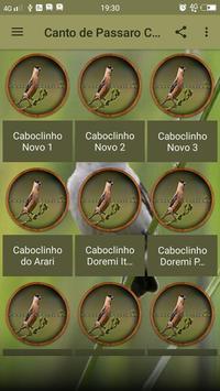 Canto de Passaro Caboclinho screenshot 1