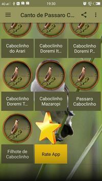 Canto de Passaro Caboclinho screenshot 2