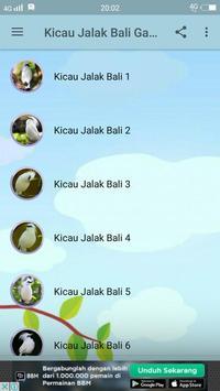 Kicau Jalak Bali Gacor screenshot 1