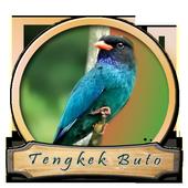 Kicau Master Tengkek Buto icon