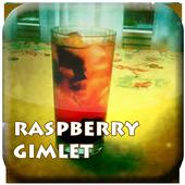 Free Cocktail Raspberry Gimlet icon