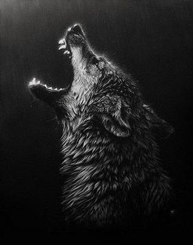 Lobo Wallpapers